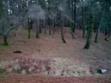 3052 Talking Mountain Trail - Photo 1
