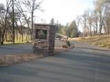 12974 Austin Forest Circle - Photo 7