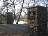 12974 Austin Forest Circle - Photo 8