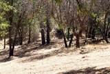 1573 Zapata Drive - Photo 2