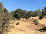 10441 Castano Way - Photo 5