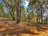 2720 Wild West Trail - Photo 7