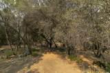 17768 Silver Pine Drive - Photo 19