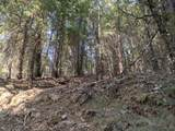 14485 Arrowhead Mine Road - Photo 3