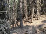 14485 Arrowhead Mine Road - Photo 6
