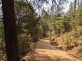 14485 Arrowhead Mine Road - Photo 7