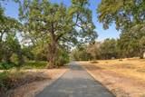 1593 Camino Verdera - Photo 25