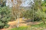 11090 Gray Pine Way - Photo 56