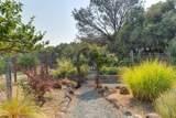 11090 Gray Pine Way - Photo 66
