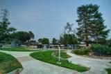 310 Bluebird Lane - Photo 36