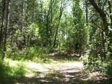 0 Hotchkiss Hill Road - Photo 4