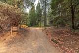 27191 Lodge Road - Photo 29
