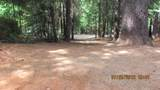 5133 Golden Aspen Drive - Photo 3