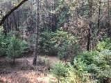 0 Cedar Pines Drive - Photo 10
