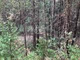 0 Cedar Pines Drive - Photo 6