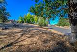 12853 Austin Forest Circle - Photo 10