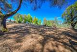 12853 Austin Forest Circle - Photo 11
