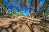 12853 Austin Forest Circle - Photo 12