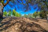 12853 Austin Forest Circle - Photo 13