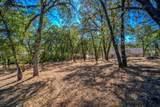 12853 Austin Forest Circle - Photo 14