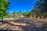 12853 Austin Forest Circle - Photo 15