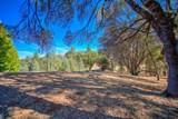 12853 Austin Forest Circle - Photo 16