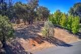 12853 Austin Forest Circle - Photo 23