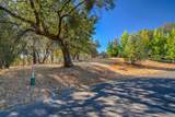 12853 Austin Forest Circle - Photo 6