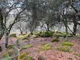 0 Lace Pine - Photo 1