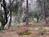 0 Lace Pine - Photo 2