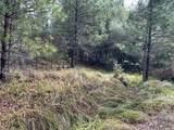 0 Lace Pine - Photo 4