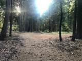 2157 Backwoods Trail - Photo 10
