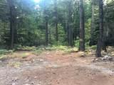 2157 Backwoods Trail - Photo 11