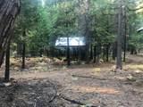 2157 Backwoods Trail - Photo 12