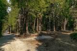 2157 Backwoods Trail - Photo 14