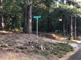 2157 Backwoods Trail - Photo 2