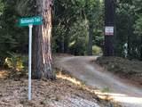 2157 Backwoods Trail - Photo 3