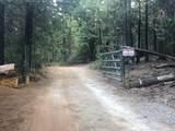 2157 Backwoods Trail - Photo 5