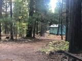 2157 Backwoods Trail - Photo 7