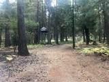 2157 Backwoods Trail - Photo 8