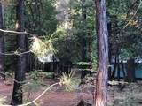 2157 Backwoods Trail - Photo 9