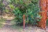2467 Shirt Tail Trail - Photo 6