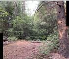 40-acres Tunnel Hill Loop Loop - Photo 2