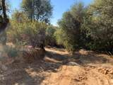 7101 Grizzly Flat Road - Photo 1