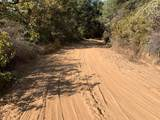7101 Grizzly Flat Road - Photo 7