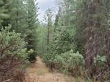 3441 Chipmunk Trail - Photo 13