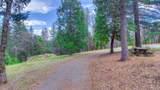 3441 Chipmunk Trail - Photo 6