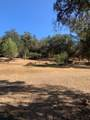 7501 Ranch Camp Road - Photo 23