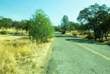 3319 Maravilla Drive - Photo 16