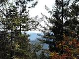 0 Ridge Road - Photo 38